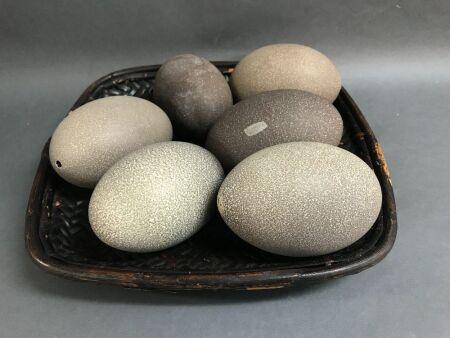 Basket of 6 Blown Emu Eggs